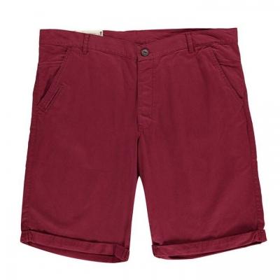 Pantaloni scurti Fenchurch Plus Chino rosu burgundy