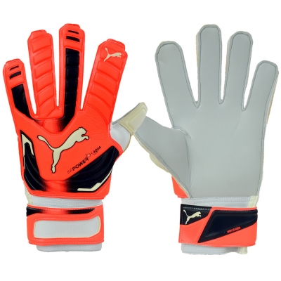 Manusa portar PUMA EVO POWER GRIP 2 AQUA 41145 30