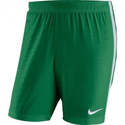 Pantaloni scurti Nike Woven Dry Venom pentru baietei verde