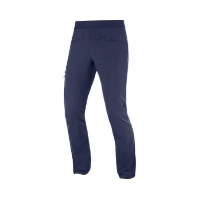 Pantaloni Drumetie Barbati Wayfarer Alpine Pant M Night Sky