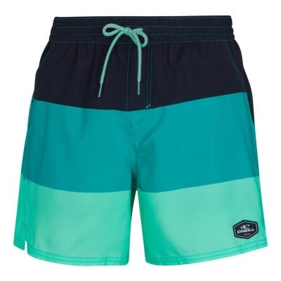 Pantaloni scurti cu imprimeu ONeill Swim albastru verde