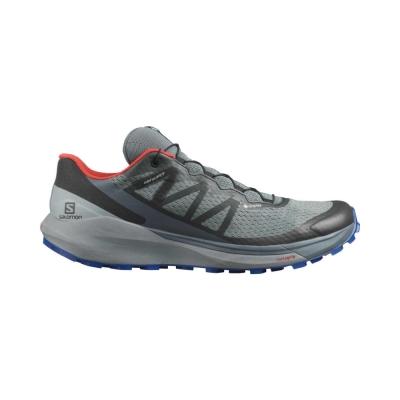 Pantofi Alergare Barbati Salomon SENSE RIDE 4 INVISIBLE GTX Gri