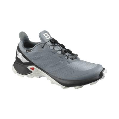 Pantofi Alergare Barbati SUPERCROSS BLAST GTX Gri Salomon