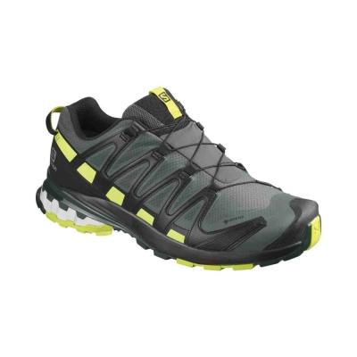 Pantofi Alergare Barbati XA PRO 3D v8 GTX Gri