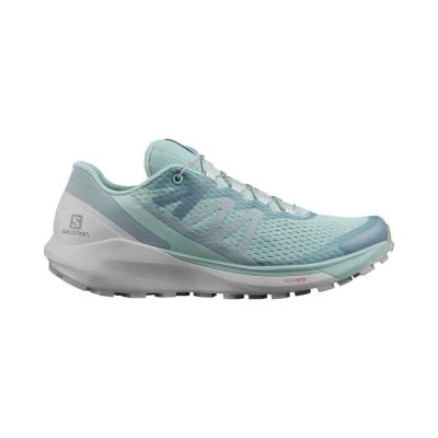 Pantofi Alergare Femei Salomon SENSE RIDE 4 W Vernil