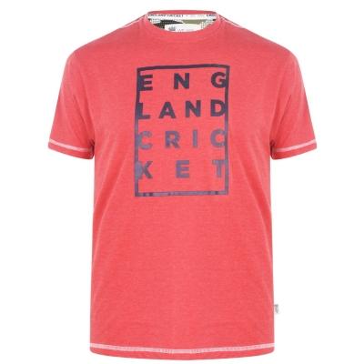 Tricou Anglia Cricket Cricket Box imprimeu Graphic Replica pentru Barbati albastru gri