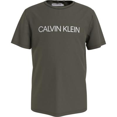 Tricou Calvin Klein Institution pentru baieti mov multicolor lfh