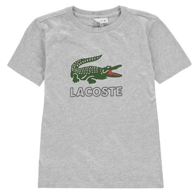 Tricou cu imprimeu Lacoste Sport pentru baietei gri