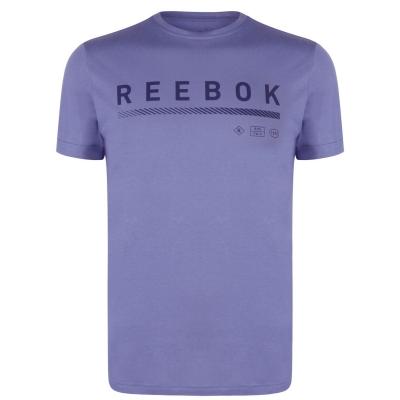 Tricou Reebok Icons pentru Barbati washed albastru