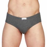 Chiloti Pierre Cardin Underwear PCU_103 Gri