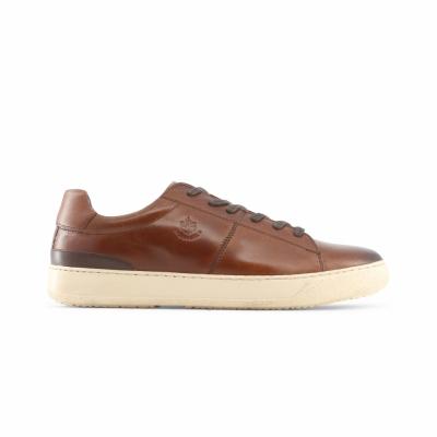 Pantofi sport Lumberjack BLAZER05 Maro